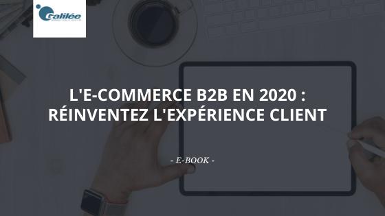 L'E-Commerce B2B en 2020 : L'expérience client est la clé