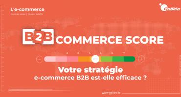 Évaluez les performances de votre stratégie e-commerce B2B pour la vente en ligne aux professionnels
