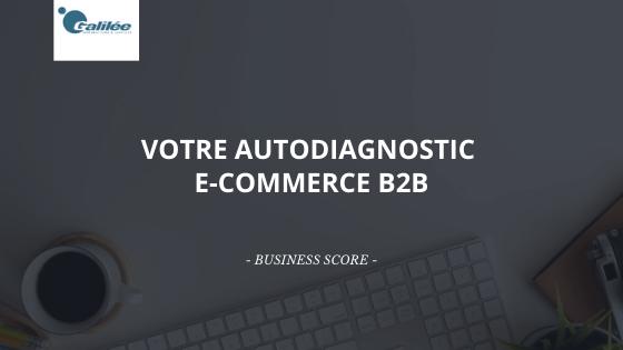 Réalisez votre propre autodiagnostic e-commerce B2B et mesurez l'efficacité de votre stratégie
