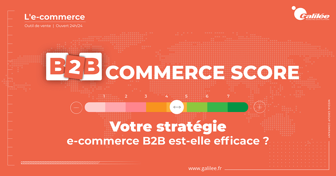 Autodiagnostic E-Commerce B2B