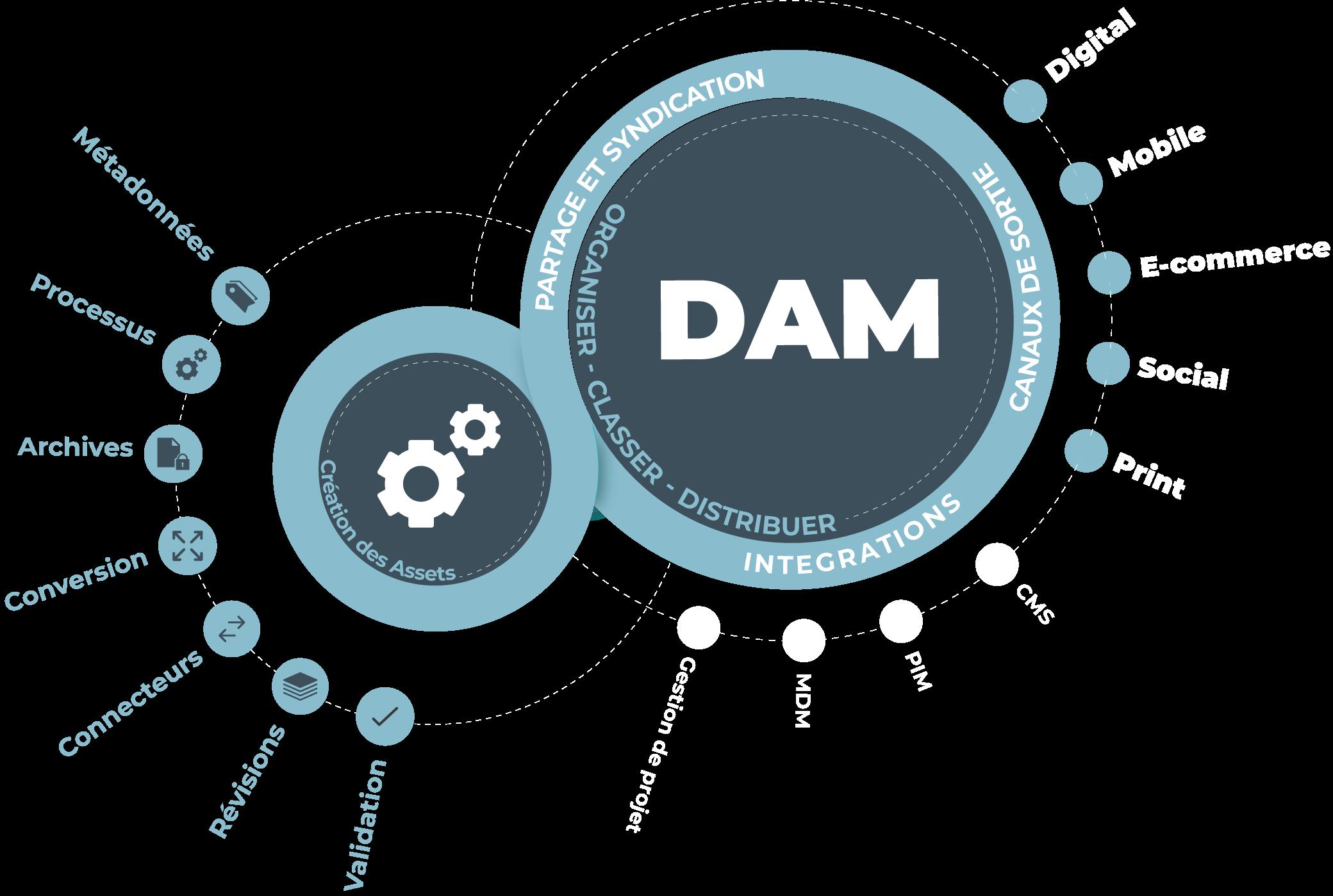 Le Digital Asset Management (DAM) est destiné à la gestion et au stockage des ressources numériques de l'entreprise.
