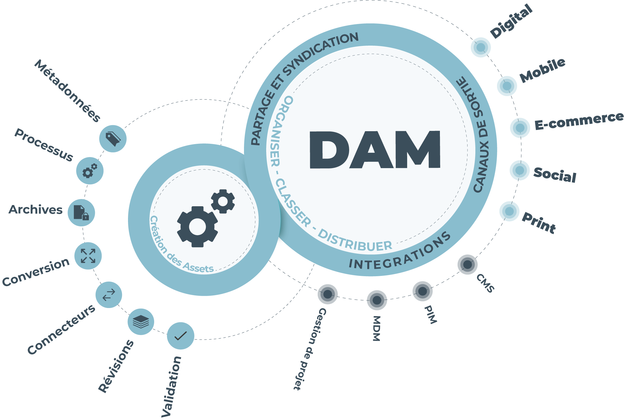 Le DAM permet de stocker, organiser et partager les ressources numériques d'une entreprise, de manière centralisée.