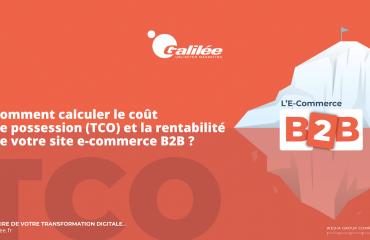 Comment calculer le coût de possession et la rentabilité de votre site e-commerce B2B ?