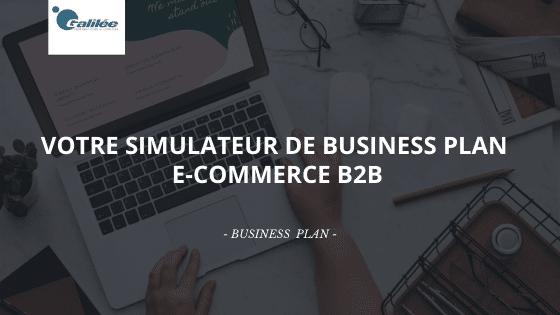 Téléchargez votre simulateur de Business Plan E-Commerce B2B