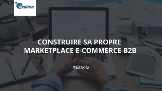Construire sa propre marketplace e-commerce B2B : désormais accessible aux PME et ETI françaises