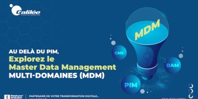 Explorez le Master Data Management multi-domaines